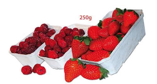 Pojemnik na owoce a`1000