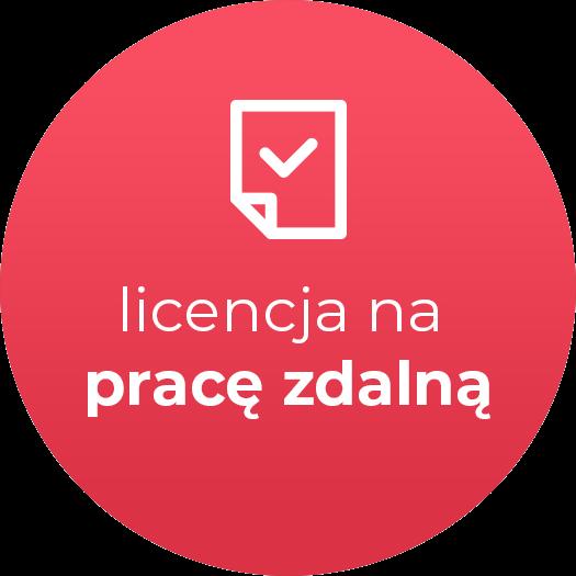 Rewizor GT - licencja oddziałowa na pracę zdalną (licencja elektroniczna)