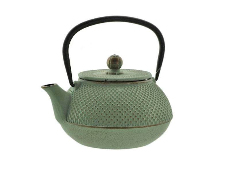 Cast iron japanese teapot 0,8L GIFT ONE MINT