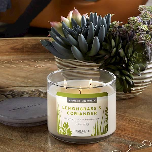 CANDLE Essential 14.75 oz - Lemongrass & Coriander