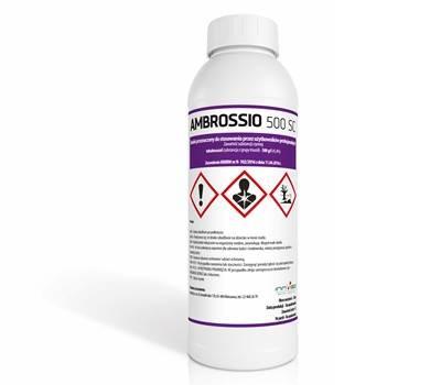 Ambrossio 500 SC a 1 l