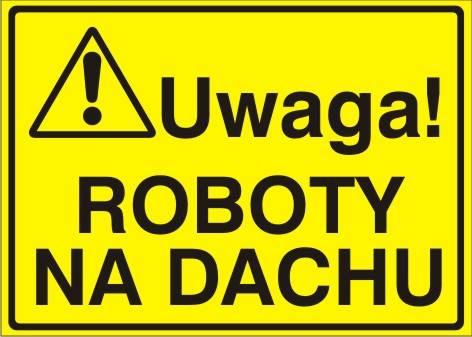 [319-02] - Uwaga! Roboty na dachu