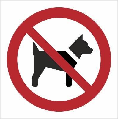 [P21] - Zakaz wstępu ze zwierzętami