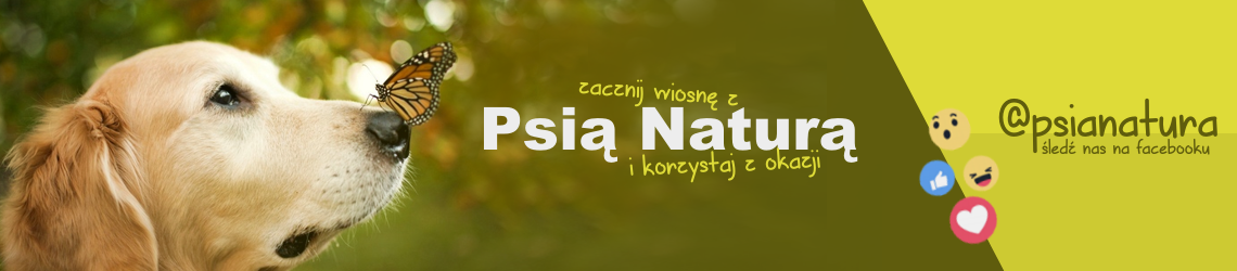 baner-WIOSNA.png