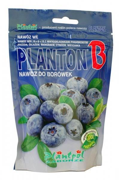 Nawóz do borówek Planton B