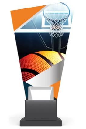 CG02A/koszykówka wys. 26 cm