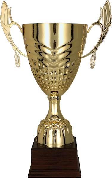 Puchar 3121F wys. 28,5 cm