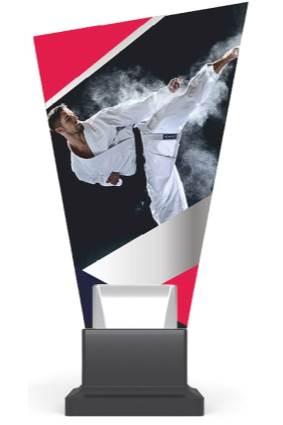CG02/karate wys. 26 cm