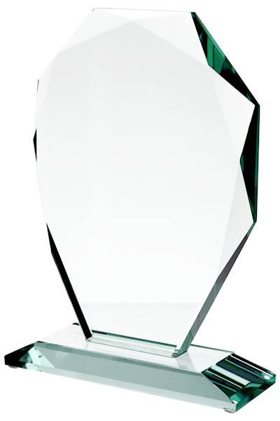 trofeum G007 wys. 24 cm