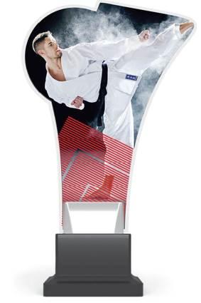 plexi CP02 karate wys. 20 cm