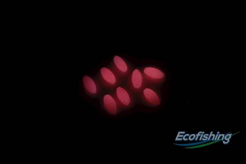 stoper under water różowy fosforescencyjny