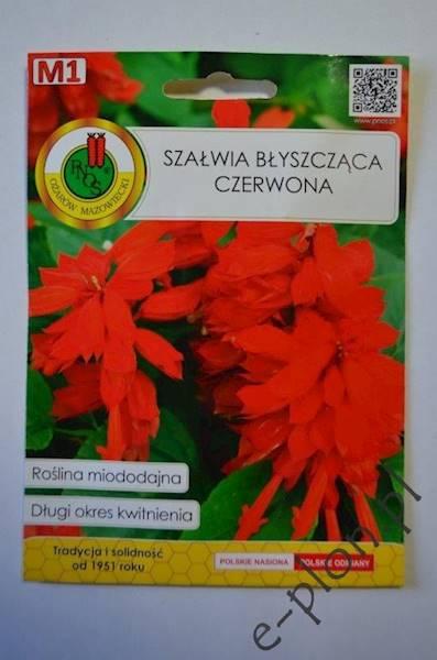 Szałwia błyszczaca Czerwona 0,5g /Ożarów/