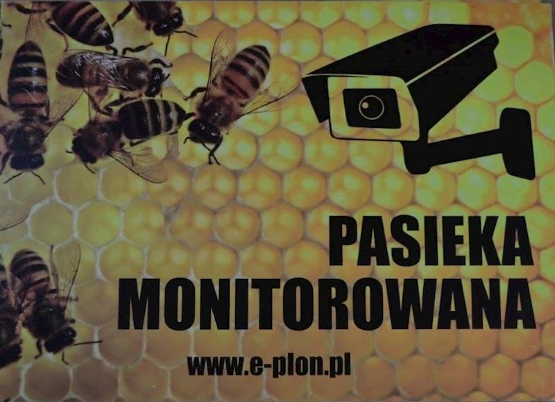 "Tabliczka A3 ""Pasieka monitorowana"" - wzór T17"