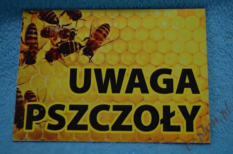 "Tabliczka A3 ""Uwaga pszczoły"" - wzór T53"