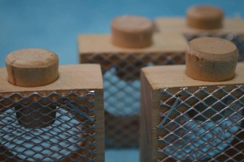 Klateczka do transportu matek drewniana Zendera
