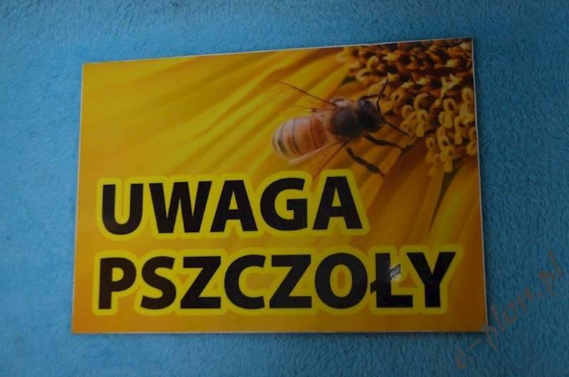 """Tabliczka """"Uwaga pszczoły"""" format A5- wzór T1"""