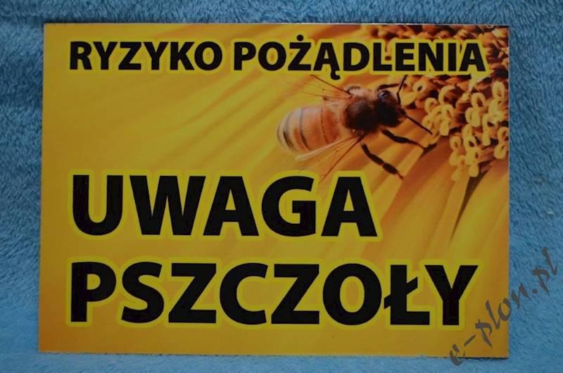 """Tabliczka """"Uwaga pszczoły"""" format A4 - wzór T6"""