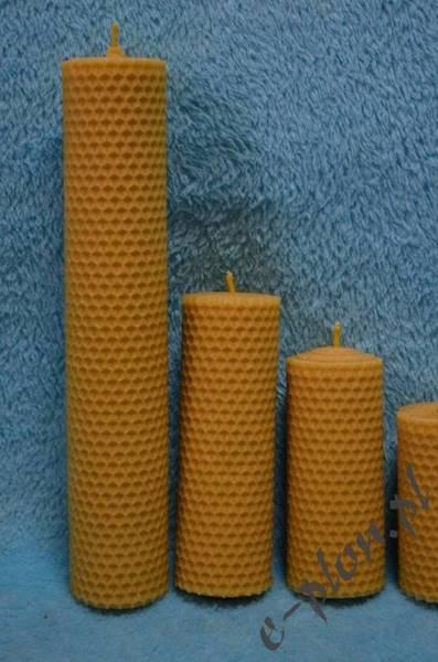 Świeca woskowa z węzy, 23 cm / S23