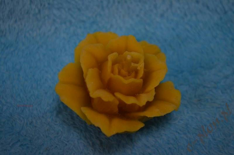 Świeca woskowa róża duża S04