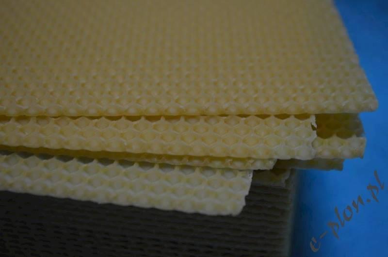 Węza pszczela dadant