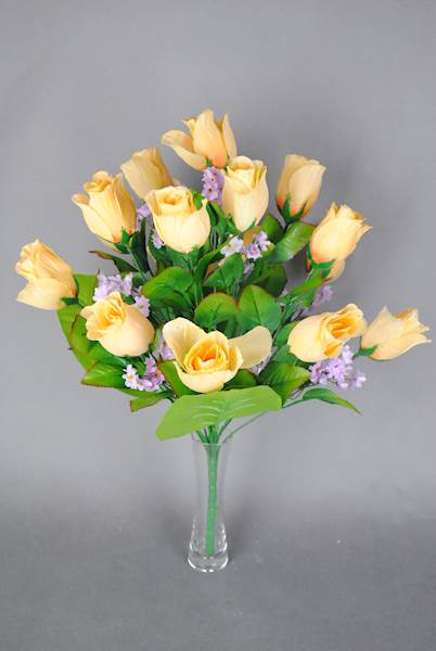 Róża x 18
