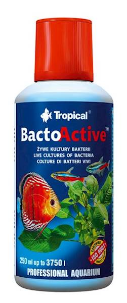 BACTO ACTIVE 250ml