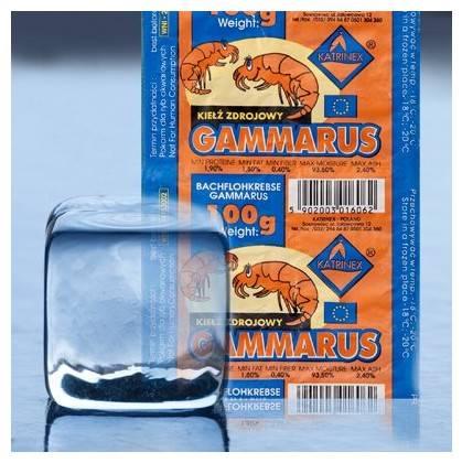 Mrożonka- GAMMARUS BLIST 100g