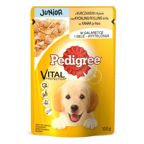 PEDIGREE JUNIOR 100g - KURCZAK ryż w galaretce *