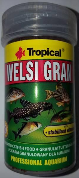 WELSI GRAN  250ml/162,5g