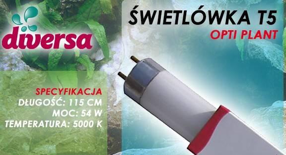 D.ŚWIETLÓWKA OPTI NATURAL T5 54W 115cm