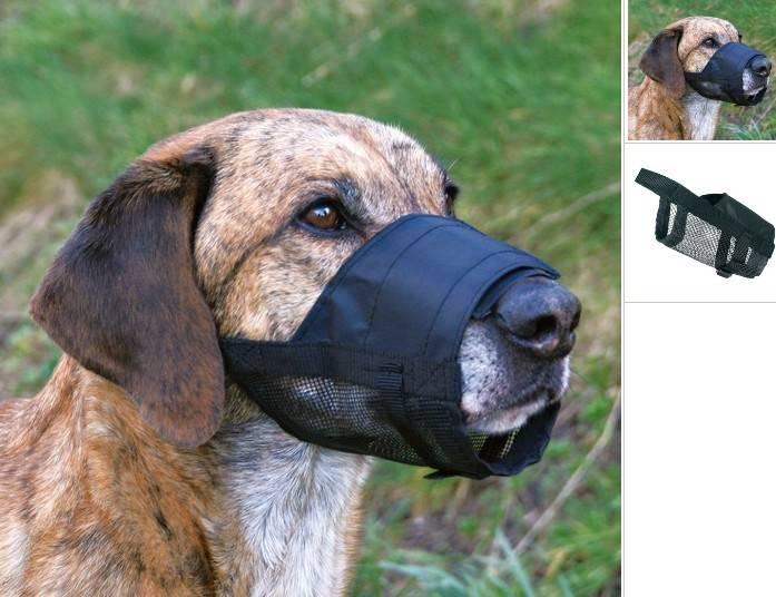 KAGANIEC TX NYLON Z SIATKĄ L - XL (Dog niemiecki)