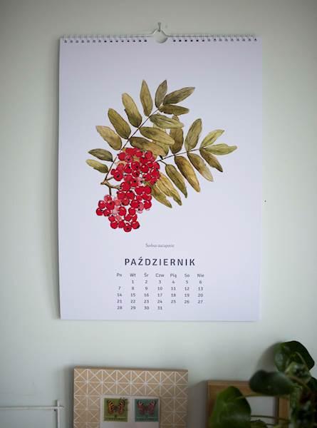 Kalendarz botaniczny 2019
