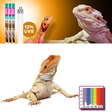 ARCADIA ŚWIETL.DLA GADÓW 15W + 12%UV