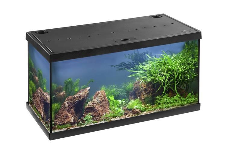 MP AQUARIEN-SET AQUASTAR 54 BLACK LED