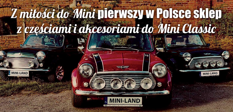MINI1-ok-2.jpg