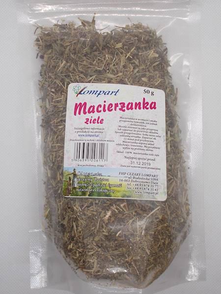 Macierzanka ziele 50g Lompart