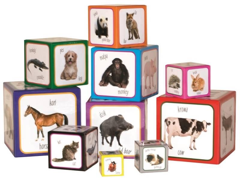 Piramida Zabaw - Kartonowe klocki Zwierzęta