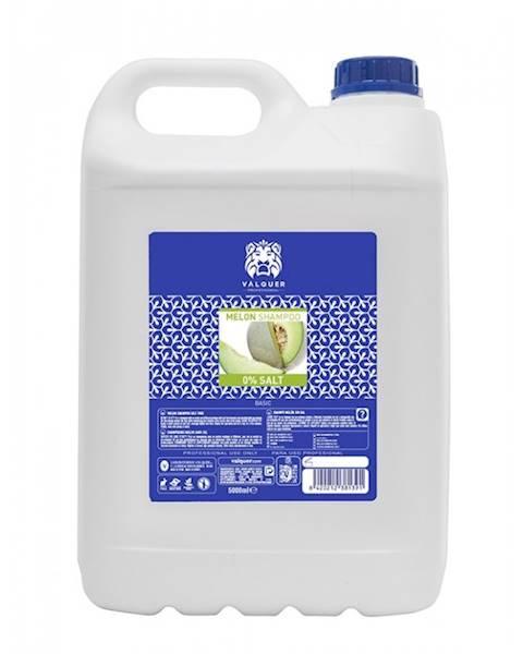 VALQUER Szampon Melon Salt Free 5000 ml