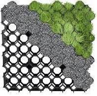 Stella Green Kratka stabilizująca Typ 1, ziel.