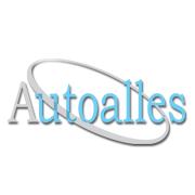 """""""AUTO ALLES"""" Sp.J. narzędzia, elektronarzędzia, materiały ścierne"""
